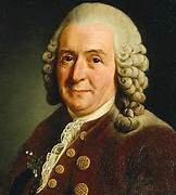 What types of characteristics did Carolus Linnaeus use to define racial categories?
